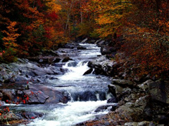 7-Day Great Smoky Mountain, Niagara Falls, East Coast Tour from Atlanta