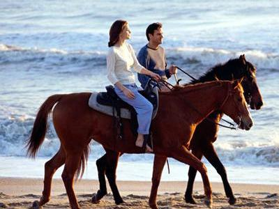 Los Cabos Horseback Riding Tour from Cabo San Lucas/Corridor/San Jose