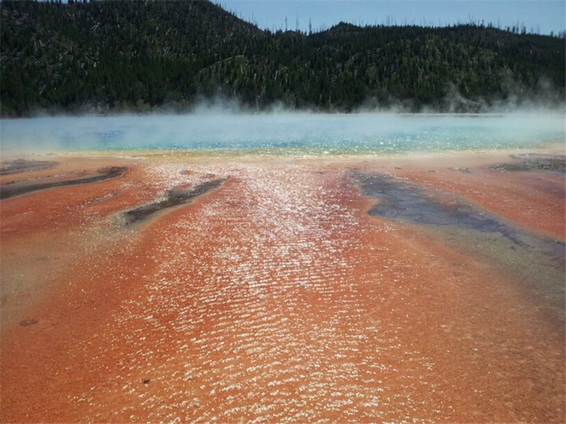 9-Day Yellowstone, Bryce Canyon, Theme Park, Grand Canyon West Tour from Los Angeles/Las Vegas