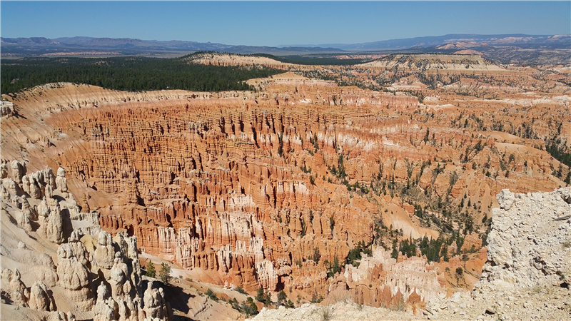10-Day Yellowstone, Bryce Canyon, Horseshoe Bend, Grand Canyon West and Theme Park Tour from Los Angeles