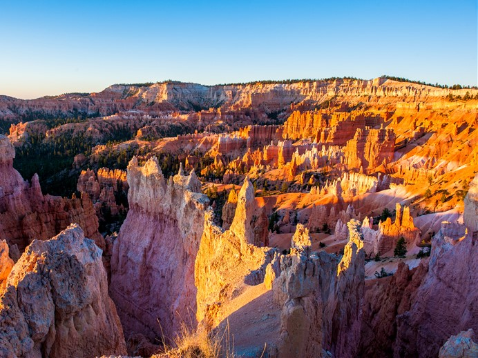 8-Day Yellowstone, Bryce Canyon, Horseshoe Bend, Grand Canyon Tour from Los Angeles/Las Vegas