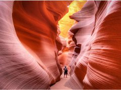 11-Day Theme Park, Antelope, Grand Canyon, Yellowstone, Bryce Canyon Tour from Los Angeles/Las Vegas