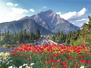 8-Days Victoria, Chemainus, Whistler, Rocky Mountains, Banff, Calgary Tour from Vancouver
