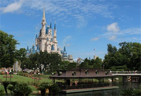 10-Day Miami, Everglades, West Palm Beach, Orlando Theme Park Tour from Miami/Fort Lauderdale