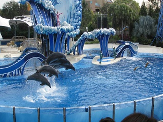 9-Day Orlando Theme Park Tour  (7 Theme Parks of Your Choice) from Orlando with Airport Transfer