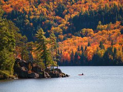 6-Day In Depth Muskoka Lake, Niagara Overnight Fall Foliage Tour from Toronto