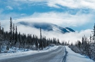 6-Day Alaska, Denali, Chena Hot Springs, Arctic Circle, Coldfoot 1 Night Camp Tour from Fairbanks