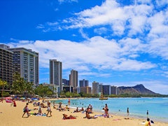 7-Day Kona, Hilo, Maui and Papakolea Green Sand Beach Tour from Honolulu with Airport Transfer