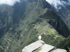 16-Day Cusco, Huayllabamba, Machupicchu, Ecuador and Isabela Island Tour from Lima with Airport Transfer