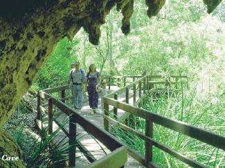 1 day margaret river tours