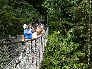 11-Day San Jose, Arenal Volcano, Manuel Antonio beach, Osa Peninsula Deluxe Tour from San Jose
