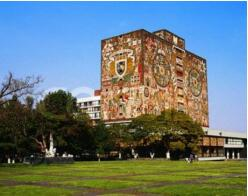 1-Day Xochimilco, Ciudad Universitaria, and Coyoacan Tour from Mexico City