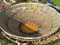 1-Day Mexico Bull Fight Tour
