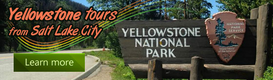 Your Yellowstone Deals from $358+
