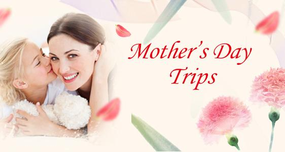 Happy Mother's Day! - Find the Cheapest Prices