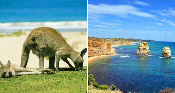Australia Sightseeing Tours