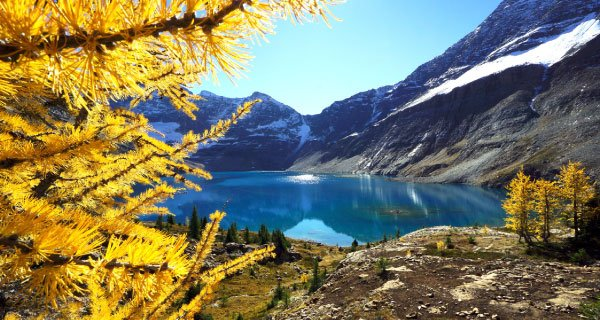 Canadian Rockies Vacation Packages from Seattle