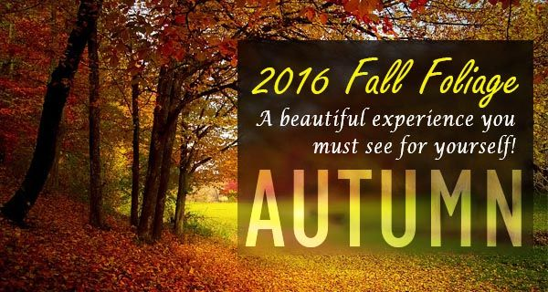 Fall Foliage Tours 2016 - Book Early!
