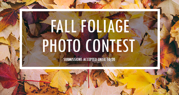 Submit Your Best Photo on Instagram!