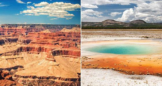 Yellowstone & Grand Canyon Tours - Family Vacations