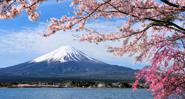 Japan Tours from Tokyo