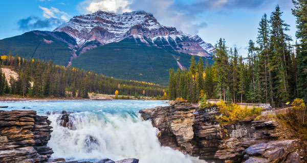 Jasper National Park Local Tours