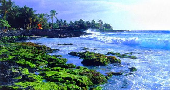 Kona Sightseeing Tours