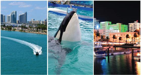 Miami Vacation Packages - Up to 15% OFF