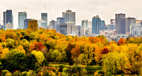 Montreal Tours from Toronto