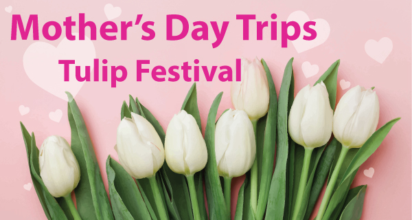 Mother's Day Tours & Tulip Festival Travel Deals