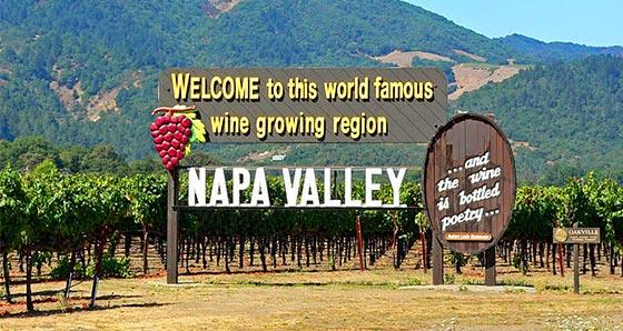 Sightseeing in Napa Valley