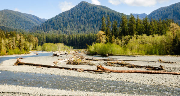 Olympic National Park Vacation Packages