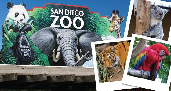 Day Trips to San Diego