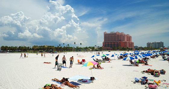 Vacation Packages to Tampa