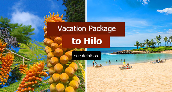 Vacation Packages to Hilo, Big Island