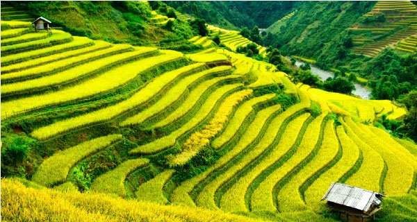 Vietnam Sightseeing Tours