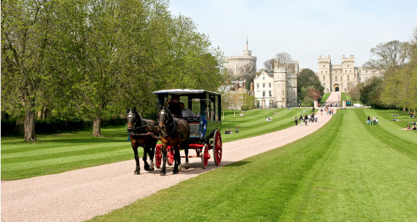 Windsor Sightseeing Tours