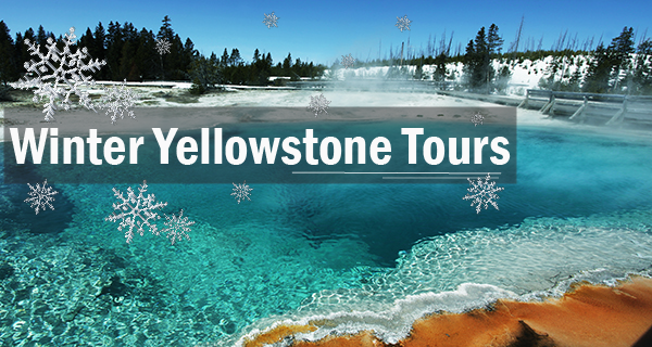 Winter Yellowstone Vacation Packages - Buy 2 Get 3rd Discounted!