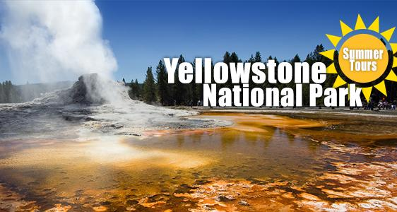 Summer Yellowstone Tours from Los Angeles - Up to 20% Off