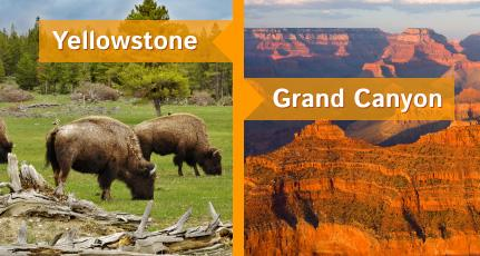 Yellowstone & Grand Canyon Tours