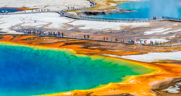 2020 Summer Seattle to Yellowstone Tours - Early Bird 15% Off