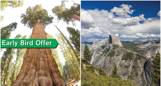 1-Day Yosemite Tour from San Francisco