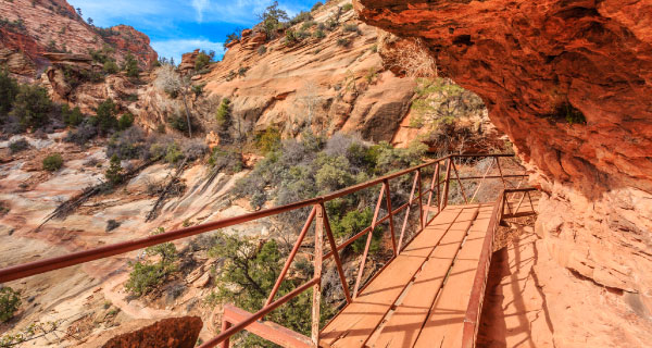Zion National Park Local Tours