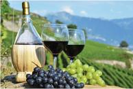 Martha's Vineyard 2-5 Day Tours
